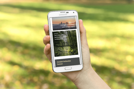 Website op mobile telefoon