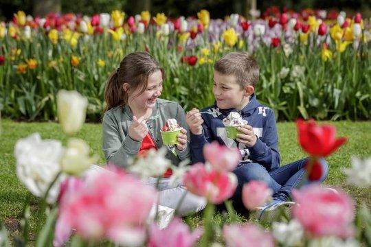 Kinderen tussen tulpenbedden in De Keukenhof