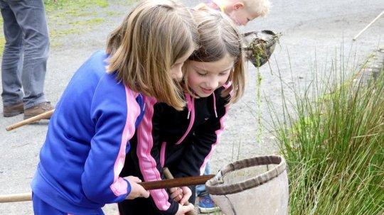 Kinderen bestuderen visnetje