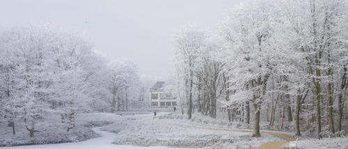 Landgoed Nieuw Leeuwenhorst in de winter