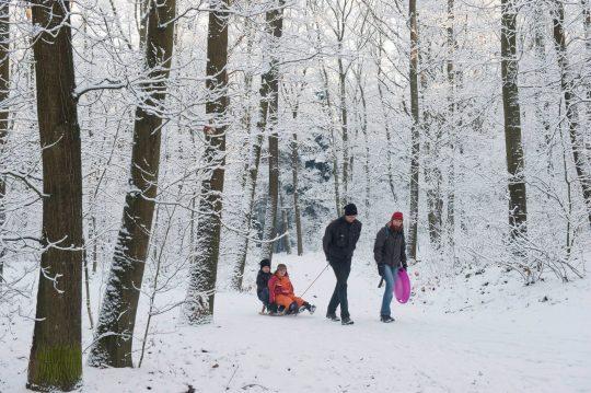 Familie met kinderen op slee in besneeuwd bos